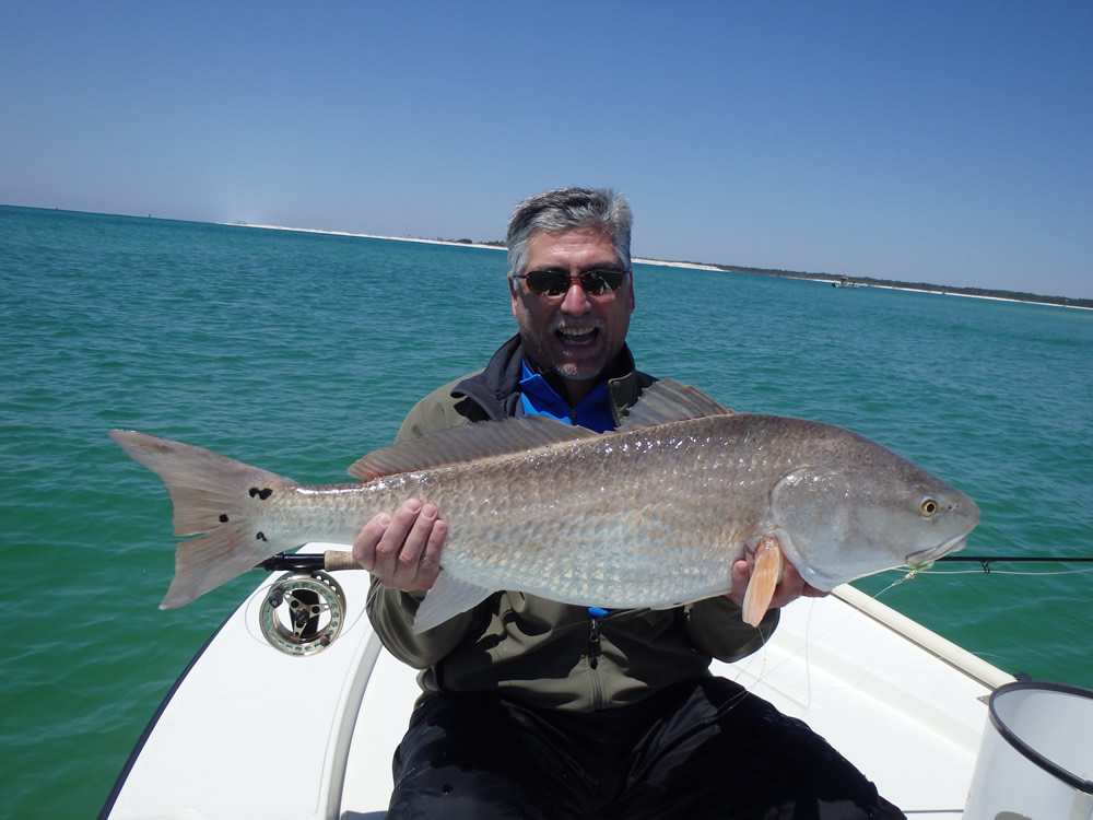 Gulf breeze guide service photo gallery for Blind robin fish