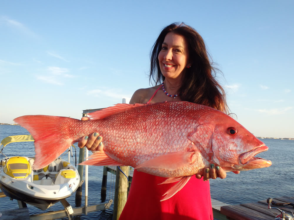 Gulf breeze guide service photo gallery for Red snapper fish